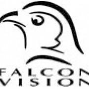 Falcon Vision